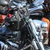 Harleys Parked 2010